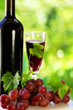 Grapes with a bottle of wine Royalty Free Stock Photo