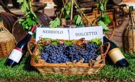 Grapes and bottles of Nebbiolo and Dolcetto Stock Photography