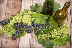 Grapes and bottles on wooden plank Royalty Free Stock Photo