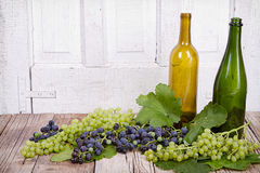 Grapes and bottles on wooden plank Royalty Free Stock Image