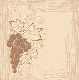 Grapes branch on vintage background Stock Photos