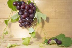 grapes on a brown background. a bunch of grapes. grapes, green leaves. dark blue grapes. stock images