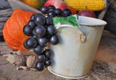 Grapes in a bucket Stock Photos