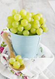 Grapes in a bucket Royalty Free Stock Photos