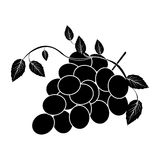 Grapes bunch icon image. Vector illustration design Royalty Free Stock Images