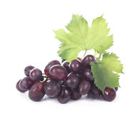 Grapes bunch Royalty Free Stock Images