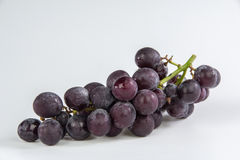 Grapes bunch. Isolated on white background royalty free stock images