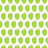 Grapes bunch pattern background design. Green grapes bunch pattern in white background design Stock Photos
