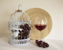Grapes in cage Royalty Free Stock Photography