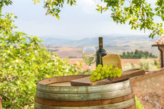 Grapes with cheese and wine. Cheese and grapes on a barrel in the Tuscan landscape Italy royalty free stock images