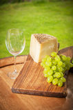Grapes with cheese and wine Stock Image