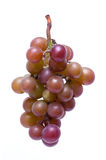 Grapes (clipping path)  Royalty Free Stock Photos