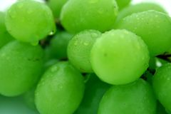 Grapes close-up. Green grapes Stock Photos