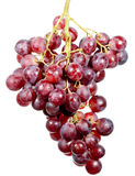 Grapes cluster Stock Photos
