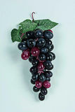 Grapes. An cluster of grapes on a white back ground with some ripening grapes and ripe grapes Stock Photos