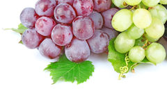 Grapes color background Royalty Free Stock Photography