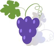 Grapes color stylized illustration in flat style. royalty free illustration