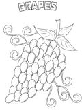 Grapes coloring page Stock Images
