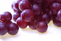Grapes with condensation. Red or purple grapes with droplets of condensation royalty free stock images