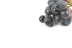 Grapes with Copyspace For Menu Royalty Free Stock Image