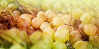 Grapes on the counter market stock photo