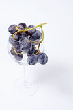 Grapes in the cup Royalty Free Stock Photos