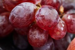 Grapes on a dark background royalty free stock images