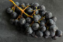 Grapes on dark board. close up Royalty Free Stock Photography