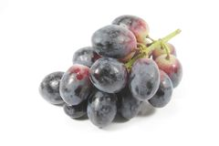 Grapes Dark, Organic and Fresh Royalty Free Stock Photos