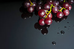 Grapes on dark reflective baclground with blank space for text Stock Photos