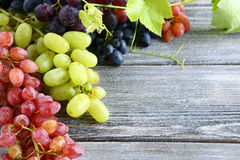 Grapes of different varieties Royalty Free Stock Photos