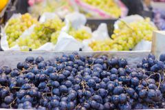 Grapes of different varieties on the shelves of the market royalty free stock images