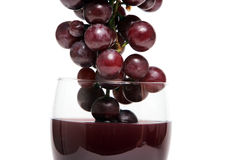 Grapes dipped into red wine Stock Photo