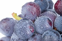 Grapes with drops, fruit. Royalty Free Stock Photos