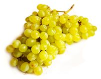 Grapes with drops of water Stock Photos