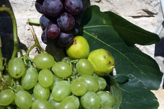 Grapes and figs. Mediterranean: grapes and figs Stock Photo
