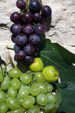 Grapes and figs. Mediterranean fruit, grapes and figs Royalty Free Stock Photo