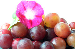 Grapes with a flower Royalty Free Stock Photo