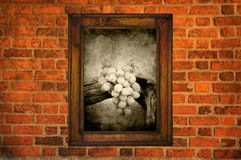 Grapes in frame Stock Images