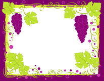 Grapes frame Royalty Free Stock Image