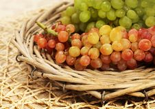Juicy fresh red and white grapes  in a wattled basket Royalty Free Stock Photos