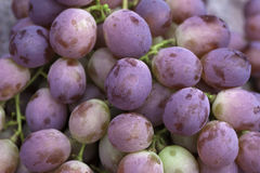 Grapes. Fresh grapes for sale at a stand Stock Image