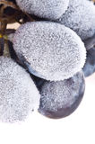 Grapes frozen. Stock Photo