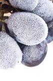 Grapes frozen. Stock Photo