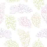 Grapes fruit graphic color seamless pattern sketch background illustration. Vector Stock Images
