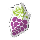 Grapes fruit isolated icon Royalty Free Stock Photos