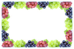 Grapes fruits fresh organic fruit frame autumn fall copyspace co Royalty Free Stock Photo