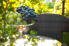 Grapes in a glass bowl Royalty Free Stock Images