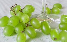 Grapes in a glass of wine. White grapes in a glass of wine Royalty Free Stock Images