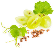 Grapes and grape seeds. Grapes, grape seeds and vine on white. Selective focus on a seeds royalty free stock photo
